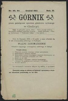 Górnik 1883 : z. 23, 24